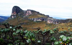 3 Days Mount Elgon Tour Uganda Mountaineering safari