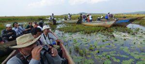 Mabamba Swamp 5 Days Uganda Safari (Mabamba, Jinja and Murchison Falls)