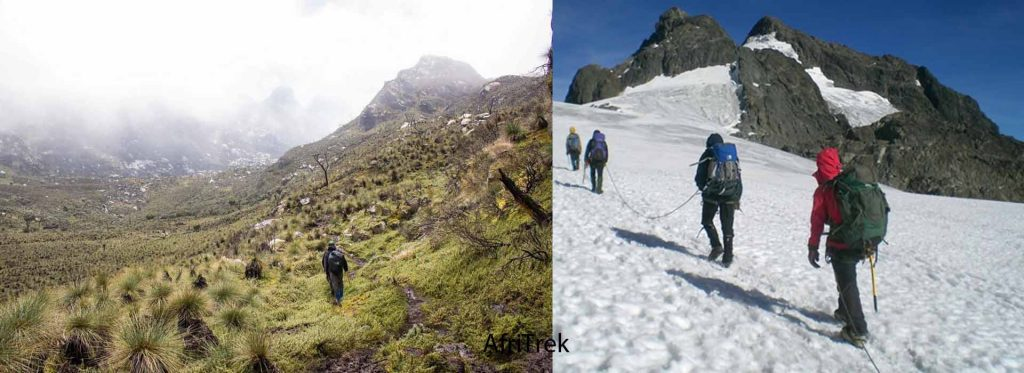 7 Days Rwenzori Mountaineering Safari