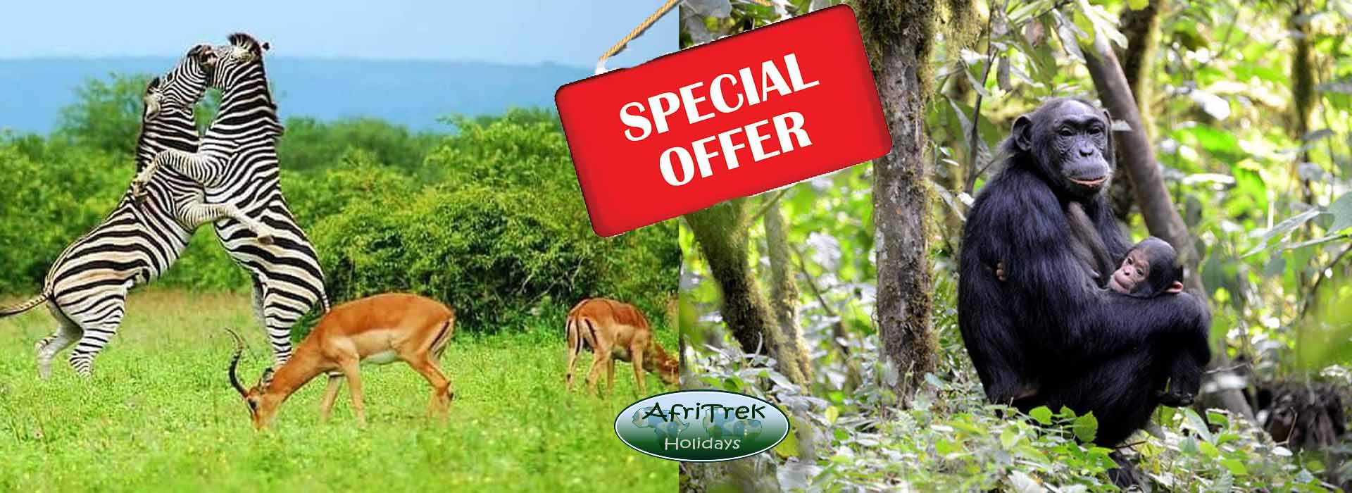 discounted uganda safaris